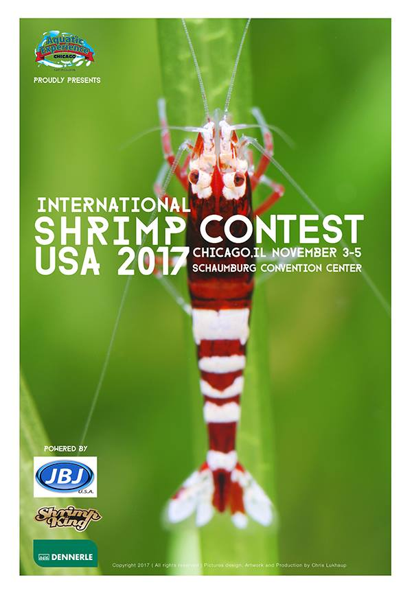International Shrimp Contest Chicago USA, November 2017